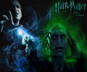 Rompicapo di Lord Voldemort è il principale nemico di Harry Potter