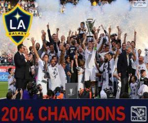 Rompicapo di Los Angeles Galaxy, campione MLS 2014