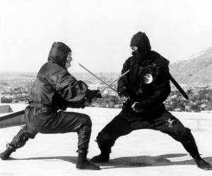 Rompicapo di Lotta tra due Ninja