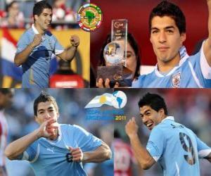 Rompicapo di Luis Suarez miglior giocatore della Coppa America 2011