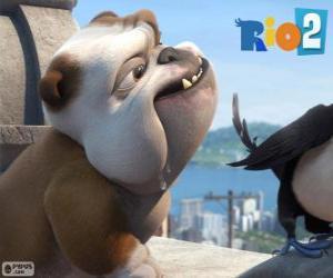 Rompicapo di Luiz nel film Rio 2