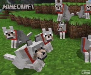 Rompicapo di Lupi di Minecraft