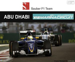 Rompicapo di M. Ericsson, GP Abu Dhabi 2016