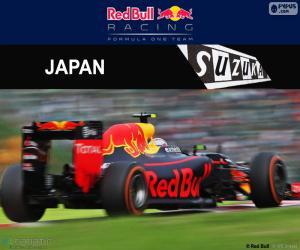 Rompicapo di M. Verstappen, GP Giappone 2016