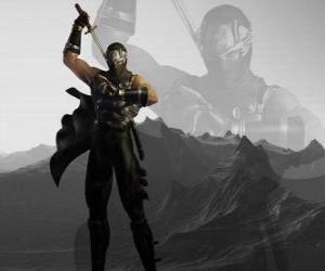 Rompicapo di Maestro ninja