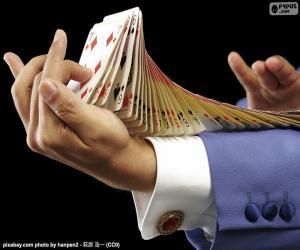 Rompicapo di Mago, trucco carte