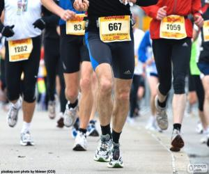 Rompicapo di Maratona