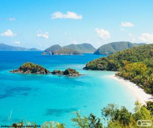 Rompicapo di Mare tropicale