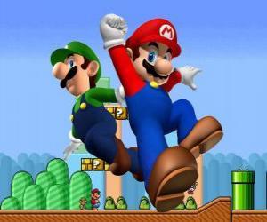 Rompicapo di Mario e suo fratello Luigi, i più famosi idraulici