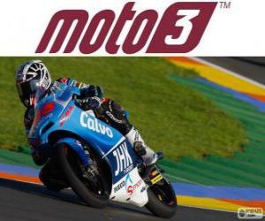 Rompicapo di Maverick Viñales, campione del mondo di Moto3, 2013