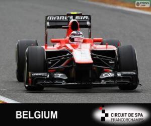 Rompicapo di Max Chilton - Marussia - Spa-Francorchamps, 2013
