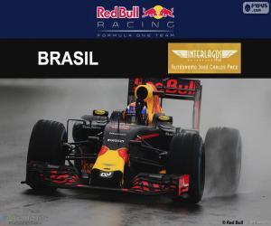 Rompicapo di Max Verstappen, GP Brasile 2016