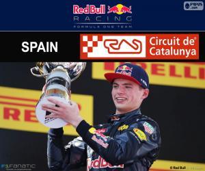 Rompicapo di Max Verstappen, G.P Spagna 2016
