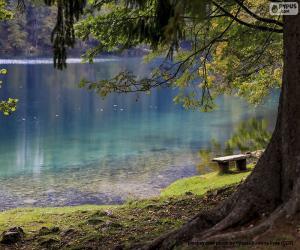 Rompicapo di Meditazione sul lago