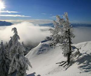 Rompicapo di Montagne nevose di Poiana Brasov, Romania