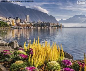 Rompicapo di Montreux, Svizzera