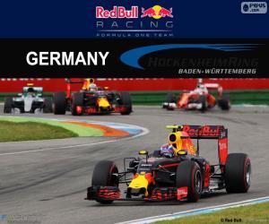 Rompicapo di M.Verstappen GP Germania 2016