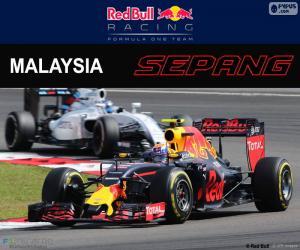 Rompicapo di M.Verstappen, GP Malesia 2016