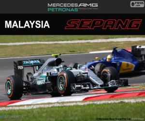 Rompicapo di N. Rosberg, GP di Malesia 2016