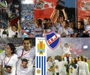 Rompicapo di Nacional de Montevideo, campione uruguaiano di calcio del 2010-2011