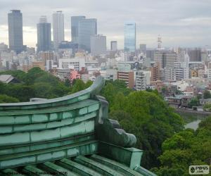 Rompicapo di Nagoya, Giappone