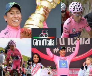 Rompicapo di Nairo Quintana, Giro 2014