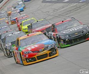 Rompicapo di NASCAR Sprint Cup Series