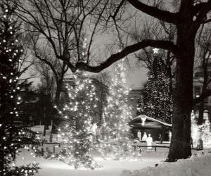 Rompicapo di Natale nel Parco