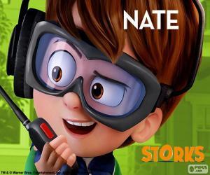 Rompicapo di Nate, Cicogne in missione