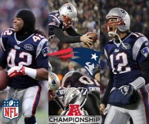 Rompicapo di New England Patriots campione AFC 2011