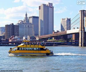Rompicapo di New York Water Taxi