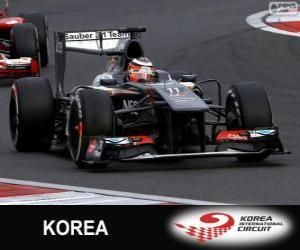 Rompicapo di Nico Hülkenberg - Sauber - Circuito internazionale di Corea, 2013