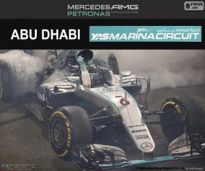 Rompicapo di Nico Rosberg, GP Abu Dhabi 2016