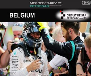 Rompicapo di Nico Rosberg, GP Belgio 2016