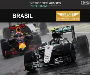 Rompicapo di Nico Rosberg, GP Brasile 2016