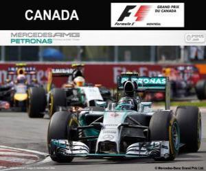 Rompicapo di Nico Rosberg - Mercedes - Gran Premio del Canada 2014, 2º classificato