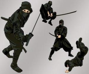 Rompicapo di Ninja in varie posizioni