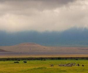 Rompicapo di Norongoro - Tanzania -
