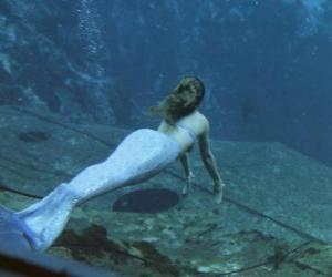Rompicapo di Nuoto della sirena