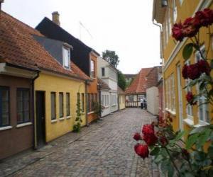 Rompicapo di Odense, Danimarca