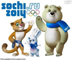Rompicapo di Olimpiadi di Sochi 2014
