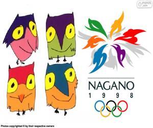 Rompicapo di Olimpiadi invernali di Nagano 1998