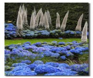 Rompicapo di Ortensie e fiori esotici