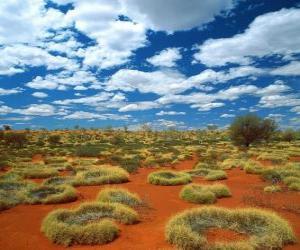 Rompicapo di Outback australiano