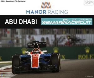 Rompicapo di P. Wehrlein, GP Abu Dhabi 2016