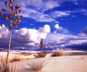 Rompicapo di Paesaggio del deserto