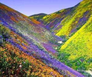 Rompicapo di Paesaggio del primavera