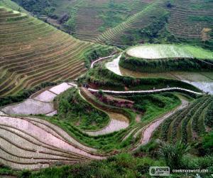 Rompicapo di Paesaggio della Cina rurale