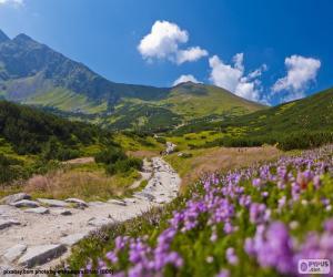 Rompicapo di Paesaggio della montagna