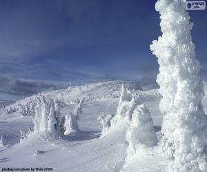 Rompicapo di Paesaggio ghiacciato